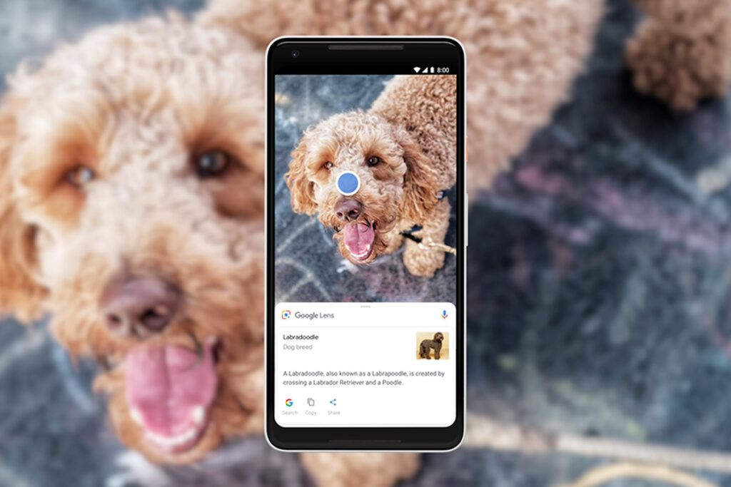 Google Lens is coming to desktop Chrome as an integrated image Search tool.