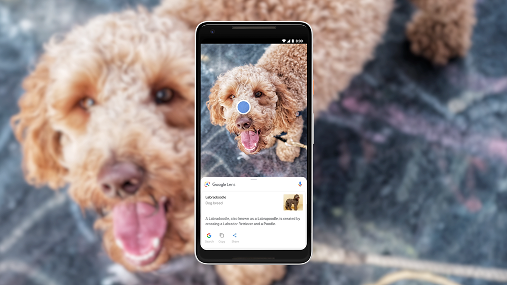 Google Lens got Update, read to know about it.